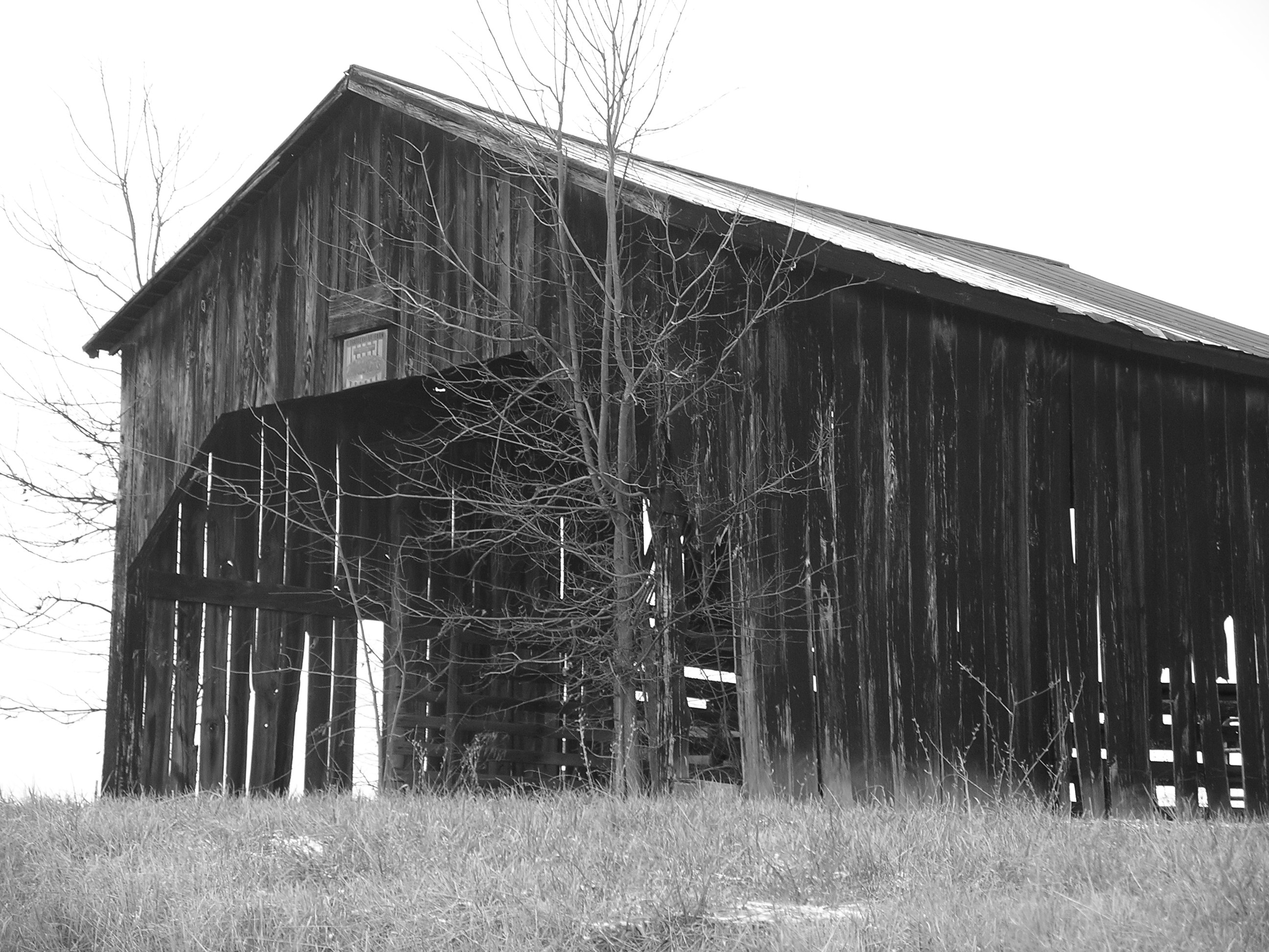 Kentucky Barn #1 Black and White