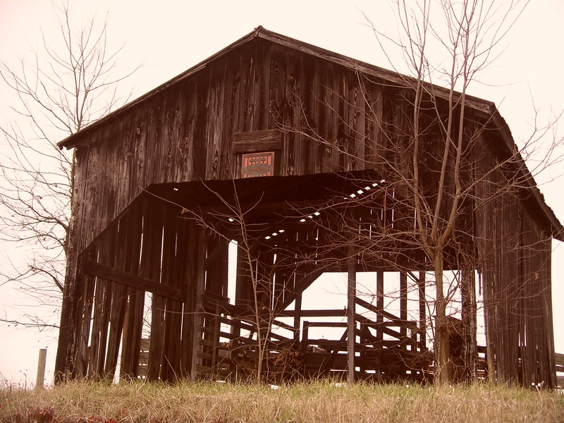 Kentucky Barn #2